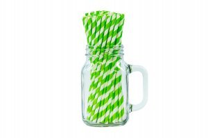 "8"" Lime Green & White Paper Straws-0"